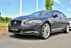 Jaguar nuovissimo XF Fotografia Stock