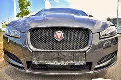Jaguar nuovissimo XF Fotografie Stock Libere da Diritti
