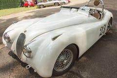 1949 Jaguar Royalty Free Stock Photos