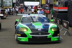 Jaguar racerbil Fotografering för Bildbyråer