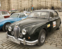 Jaguar retro Imagens de Stock Royalty Free