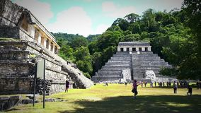 Jaguar's Temple and The Palace in the Palenque archeological zone. CHIAPAS, MEX-CIRCA AUGUST 2018: Jaguar's Temple and The Palace in the Palenque stock video footage