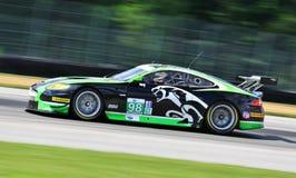Jaguar samochodowy ścigać się Obrazy Stock