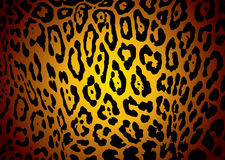 Jaguar skin. Illustrated yellow and black jaguar skin background with camouflage effect royalty free illustration