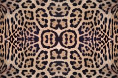 Jaguar skin pattern. Jaguar skin pattern for the background Royalty Free Stock Image