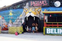 Jaguar stång Royaltyfria Bilder
