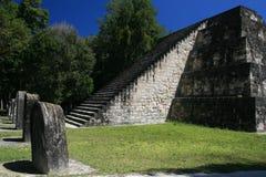 Jaguar tempel Royaltyfria Foton