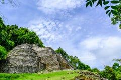 Jaguar Tempel-Side Lizenzfreie Stockfotografie