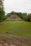 Jaguar Temple with Field Stock Image