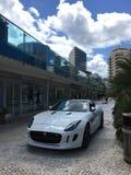 Jaguar-tentoonstelling van nieuwe modellen Stock Afbeelding