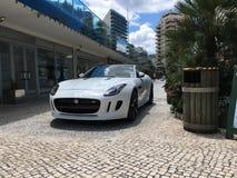 Jaguar-tentoonstelling van nieuwe modellen Stock Foto