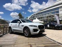 Jaguar-tentoonstelling van nieuwe modellen Royalty-vrije Stock Afbeelding
