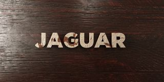 Jaguar - titre en bois sale sur l'érable - image courante gratuite de redevance rendue par 3D illustration stock