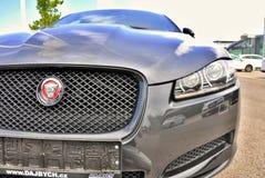 Jaguar tout neuf XF Image libre de droits