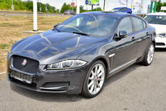Jaguar tout neuf XF Photos libres de droits