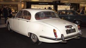 Jaguar typ Zdjęcie Royalty Free