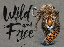 Jaguar vattenfärgmålning med bakgrund, rovdjurs- tryck för djurliv för djur lös och fri djurliv, för t-skjorta arkivbild