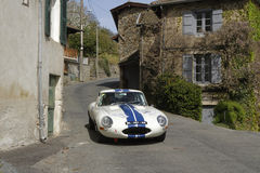 A Jaguar in the village Royalty Free Stock Photography