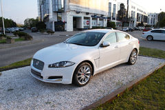 Jaguar XF Stockbild