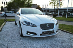 Jaguar XF Fotografering för Bildbyråer