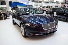 Jaguar XF Fotografia Stock