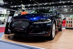 Jaguar xf Stock Images