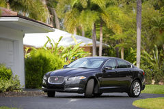 Jaguar XF parked in the driveway Stock Images