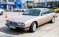 Jaguar XJ Royalty-vrije Stock Foto's