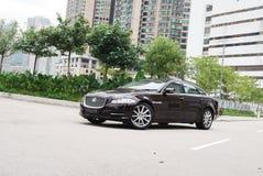 Jaguar XJ Royaltyfri Bild
