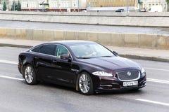 Jaguar XJ Royaltyfria Foton