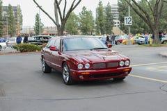 Jaguar XJ6 classic car on display Stock Photography