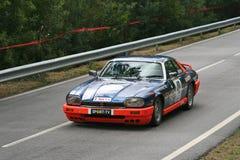 Jaguar XJS emballant chez Rampa DA Falperra 2012 Image stock