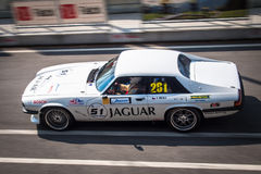 Jaguar XJS tävlings- bil Royaltyfri Fotografi