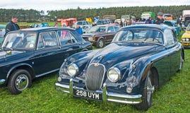 Jaguar XK 150 Arkivbild