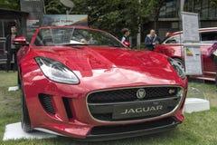 Jaguar XKF S su esposizione Immagini Stock Libere da Diritti