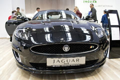 Jaguar Xkr Royalty Free Stock Image