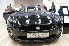 Jaguar Xkr Lizenzfreies Stockbild