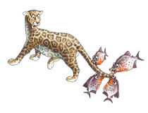 Jaguar y piraña Fotografía de archivo