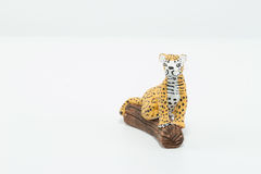 Jaguar, yellow, black and white, seated on a wood trunk isolated Royalty Free Stock Photos