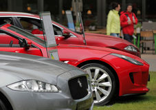 Jaguars at Motorexpo in London Royalty Free Stock Photos
