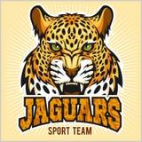 Jaguars - Sport Team Design. Jaguars - Retro Style Sport team on light background Royalty Free Stock Images