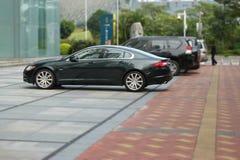 Jaguarxf som parkeras nära kontorsbyggnaden arkivfoto