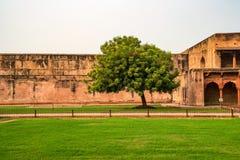 Jahangir pałac w forcie Agra Fotografia Stock