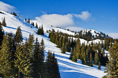 Jahorina Ski Center, Bosnia and Hercegovina Royalty Free Stock Photo