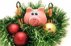 Jahr ein Schwein Stockfoto
