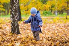 1 Jahre alte Baby geht auf gefallene Blätter Lizenzfreie Stockfotos