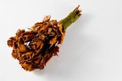 20 Jahre des alten Heiratsblumenstraußes von 21 Rosen - trockene Königin aller Flora stockbilder