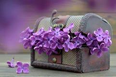 Jahrestagskarte mit lila Blumen im Weinlesekasten Stockbilder