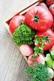 Jahreszeit Gemüse und fruts lizenzfreies stockfoto