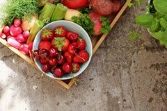 Jahreszeit Gemüse und fruts stockbild